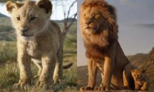 The Lion King Total Box Office Collection In India: Crosses 125 Crore Mark